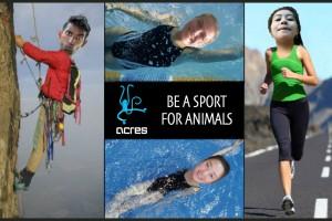 RunClimb Swim Campaign