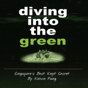 Diving into the Green (1)