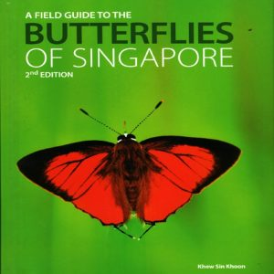 butterflies-of-singapore-front
